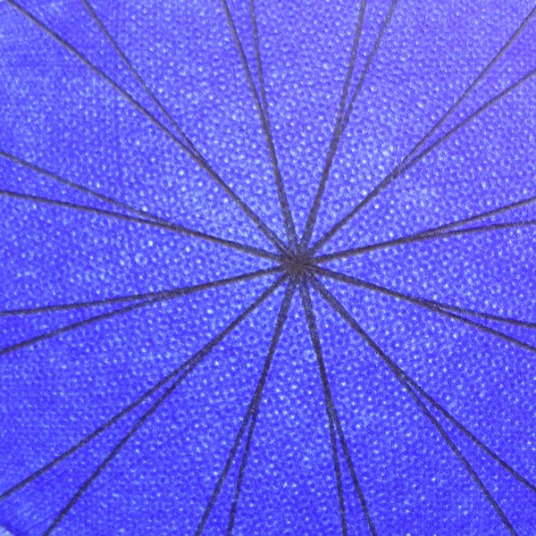 """Detail of the center of """"Blue Rose"""" drawing. © Copyright Mary Wagner"""